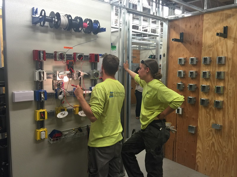 Circuity & Wiring (2)